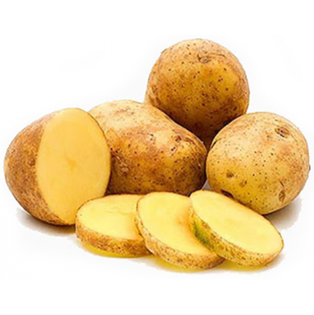 patata agria primadona