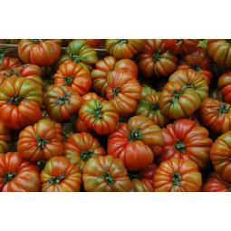 tomates raf del perello