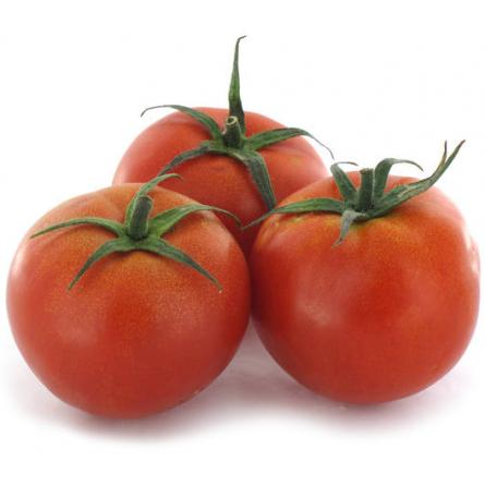 tomate ensalada calibre 25