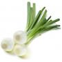 cebolleta blanca